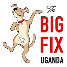 The Big Fix Uganda